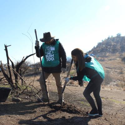 Más de 1.000 árboles nativos fueron plantados en la reforestación del Cerro la Puntilla del sector Cruz del Sur con BuinZoo